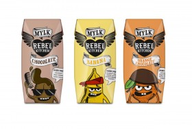 rebel-kitchen-wholesale-flavoured-coconut-milk-supplier