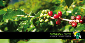 green-bean-coffee