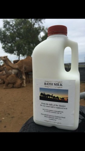 camel-milk-nsw